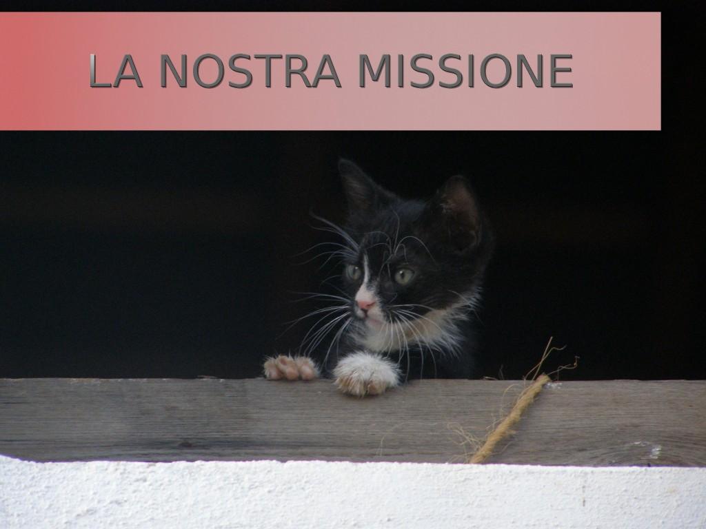 La missione dell'ambulatorio città di Albino